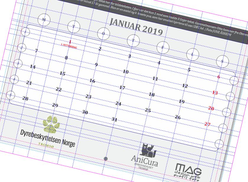 Kalender 2019 DBT DBH in the making